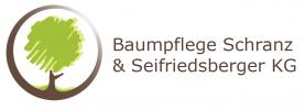 Baumschnitt, Baumrodung, Baumpflege Schranz & Seifriedsberger KG