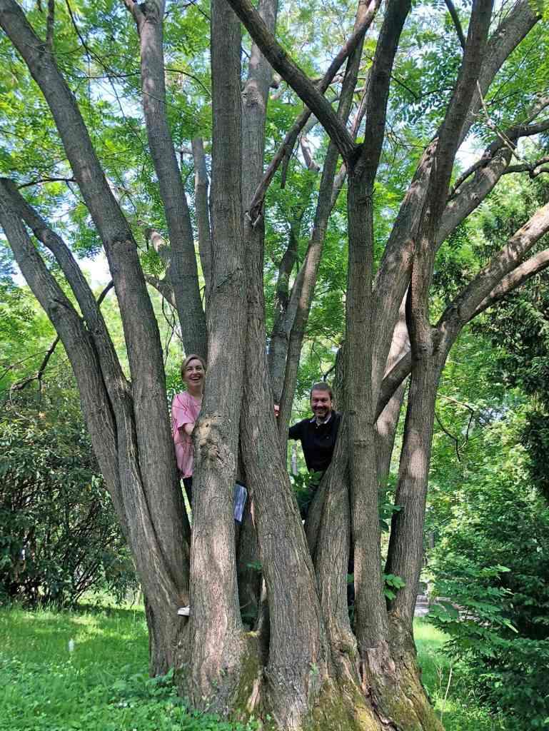 Team Baumpflege Schranz